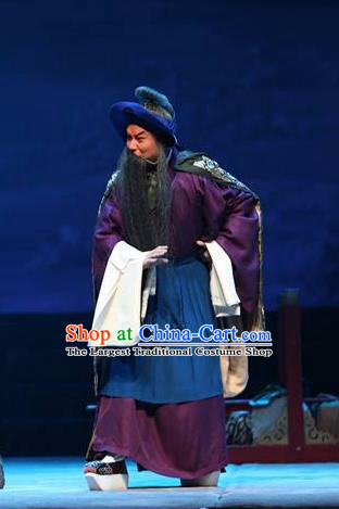 Su Wu In Desert Chinese Beijing Opera Herdsman Clothing Stage Performance Dance Costume and Headpiece for Men