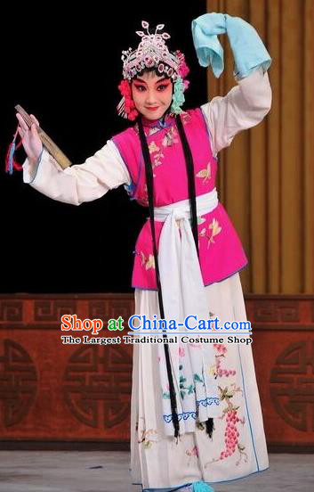 Chinese Traditional Beijing Opera Young Lady Dress Ancient Maidservants Costume for Adults