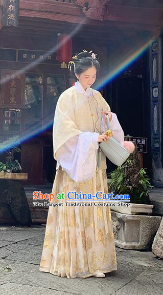 Chinese Traditional Ming Dynasty Historical Costume Ancient Aristocratic Lady Hanfu Dress for Women
