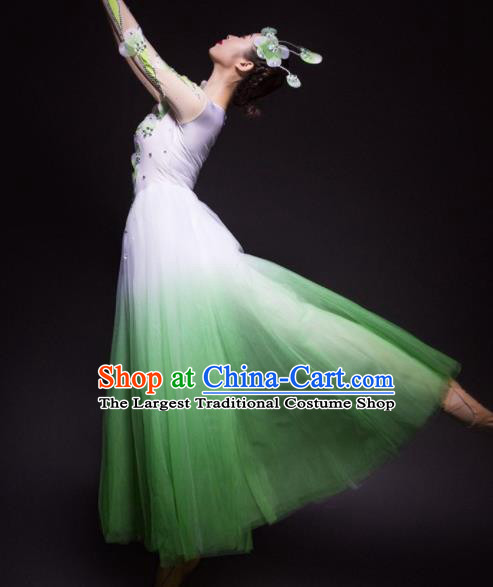 Chinese Traditional National Dance Green Veil Dress Modern Dance Stage Performance Costume for Women