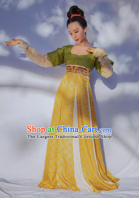 Chinese Ancient Tang Dynasty Court Maid Hanfu Dress Traditional Las Meninas Replica Costume for Women