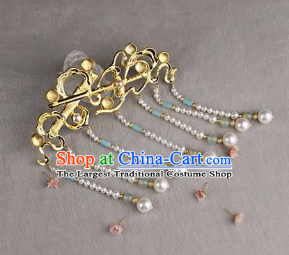 Chinese Ancient Ming Dynasty Tassel Hairpins Hair Claw Traditional Hanfu Hair Accessories for Women