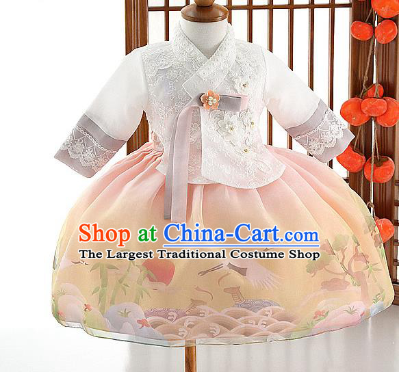 Asian Korea Girls White Lace Blouse and Printing Dress Korean Kids Fashion Traditional Hanbok Apparels Birthday Costumes