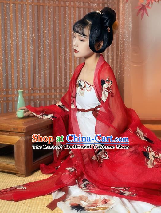 China Ancient Palace Princess Historical Clothing Traditional Tang Dynasty Court Lady Embroidered Hanfu Dress