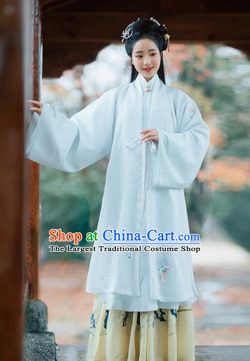 Chinese Ancient Nobility Coquette Hanfu Dress Traditional Ming Dynasty Noblewoman Embroidered Costumes for Women