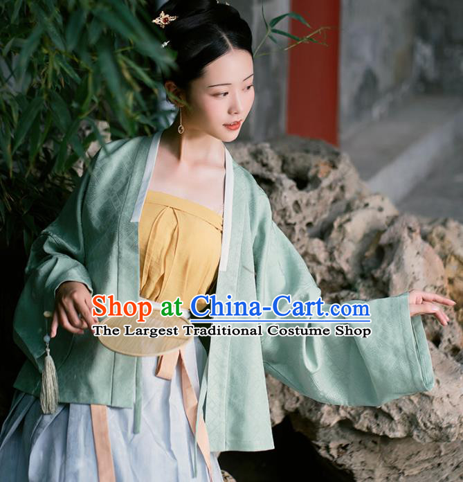 Chinese Ancient Female Civilian Dress Traditional Ming Dynasty Nobility Concubine Costumes for Women