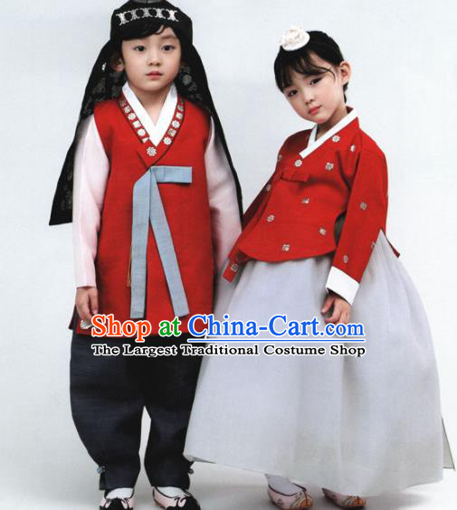 Korean Traditional Hanbok Birthday Outfit Asian Korea Fashion Costume for Kids