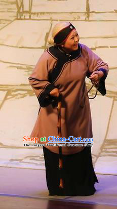 Chinese Shaoxing Opera Old Dame Garment Costumes and Headdress Mistress Xiang Lin Yue Opera Elderly Female Apparels