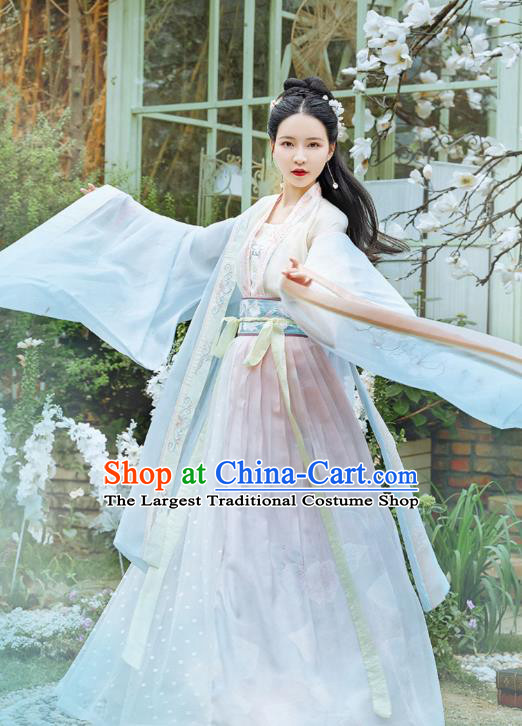 Chinese Traditional Tang Dynasty Hanfu Dress Ancient Noble Lady Apparels Historical Costumes for Women