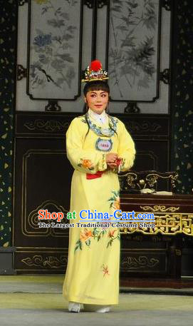 Chinese Classical Shaoxing Opera Young Male Garment Apparels Dream of the Red Chamber Costumes Yue Opera Scholar Jia Baoyu Yellow Robe and Hair Accessories