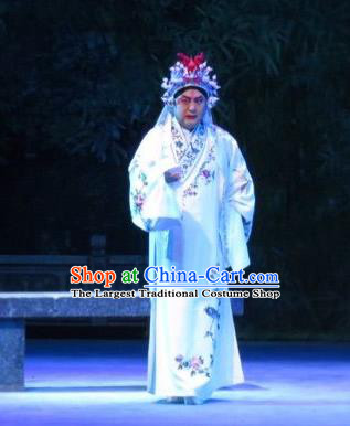 Xie Yaohuan Chinese Ping Opera Man Role Costumes and Headwear Pingju Opera Wu Hong Apparels Clothing