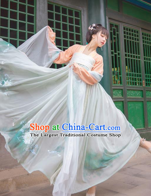 Chinese Ancient Noble Princess Historical Costumes Traditional Embroidered Hanfu Dress Tang Dynasty Court Lady Garment