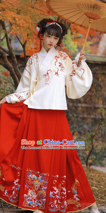 Chinese Ancient Nobility Lady Historical Costumes Ming Dynasty Garment Traditional Embroidered Hanfu Dress
