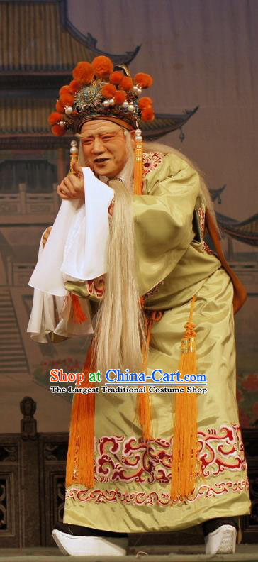 Diao Man Gong Zhu Gan Fu Ma Chinese Guangdong Opera Eunuch Apparels Costumes and Headpieces Traditional Cantonese Opera Elderly Male Garment Clown Clothing
