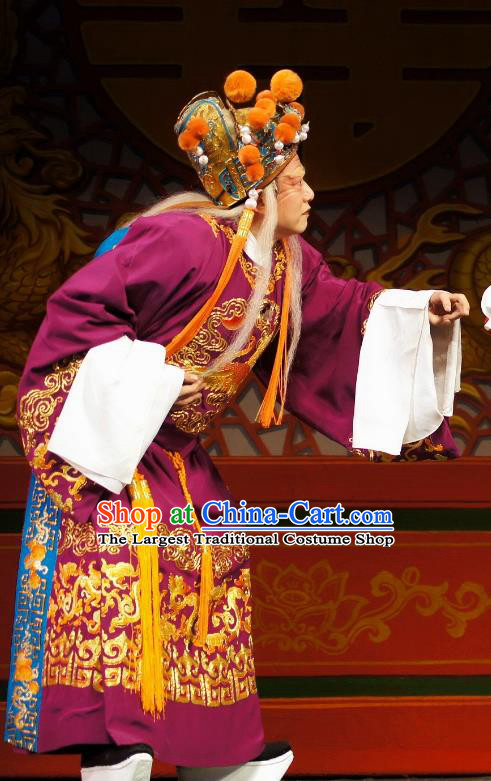 Diao Man Gong Zhu Gan Fu Ma Chinese Guangdong Opera Eunuch Apparels Costumes and Headpieces Traditional Cantonese Opera Elderly Male Garment Clown Purple Clothing
