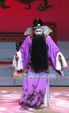 The Strange Stories Chinese Guangdong Opera Treacherous Official Pang Jijian Apparels Costumes and Headwear Traditional Cantonese Opera Jing Garment Elderly Male Clothing