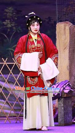 Chinese Cantonese Opera Elderly Female Garment Costumes and Headdress Traditional Guangdong Opera Apparels Dame Dress