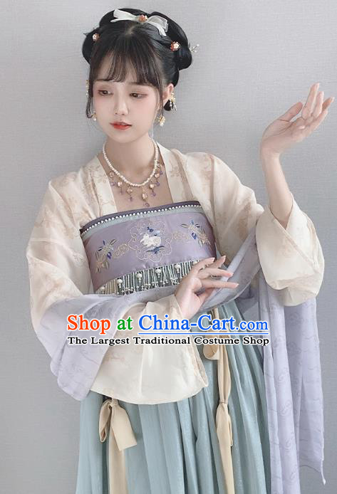 China Ancient Palace Lady Hanfu Dress Garment Traditional Tang Dynasty Princess Historical Clothing Full Set